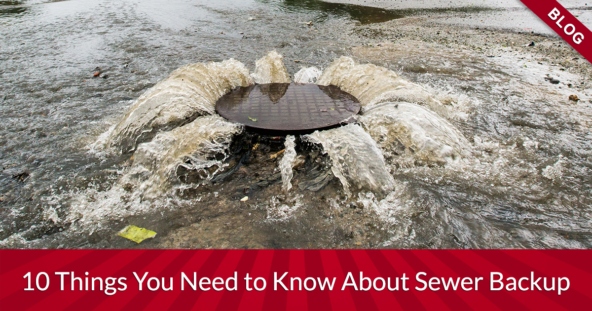 Top 10 Things You Need To Know About Sewer Backup In