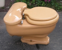 skin colored toilet