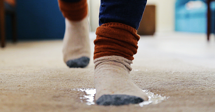 How To Dry Carpet After A Flood Mr, How To Dry A Flooded Basement Carpet